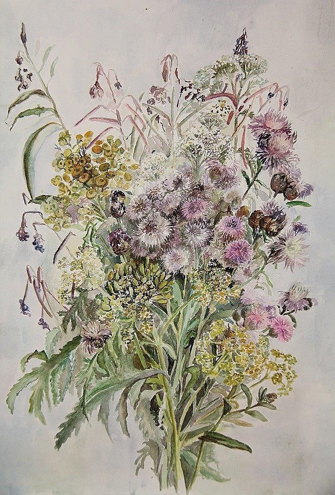 """""""Полевые цветы"""" акварель (в частной коллекции).JPG"""